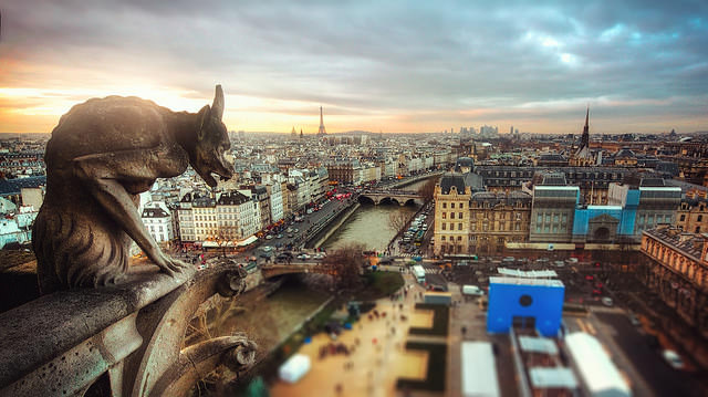 Paris Gargoyle View